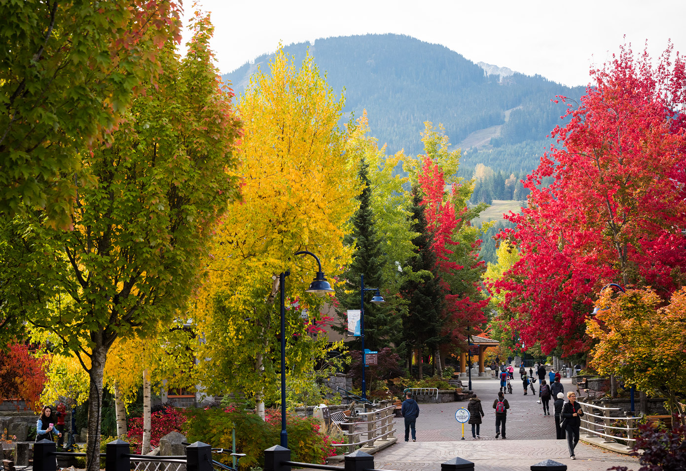 Whistler Village stroll in fall colours